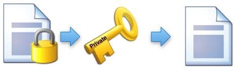 برنامههای رمزگشا برای ویروس باجگیر Ransomware Decryptor